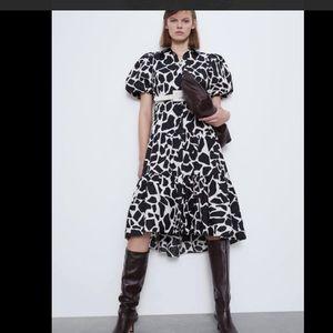NWT Zara Animal print Dress